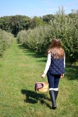 Apple Picking_0914