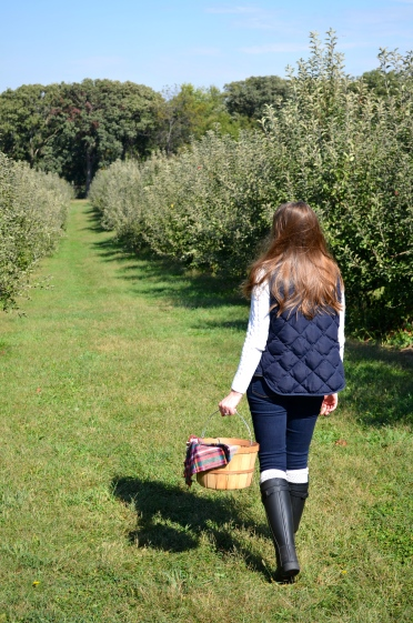 Apple Picking_0914