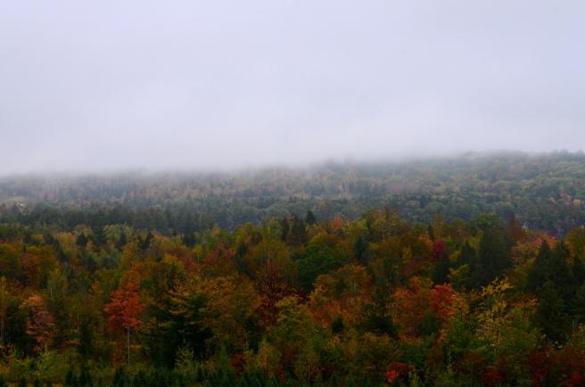 Fall Foliage Drive 2017_1108