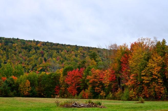 Fall Foliage Drive 2017_1138