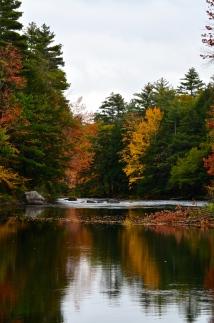Fall Foliage Drive 2017_1158
