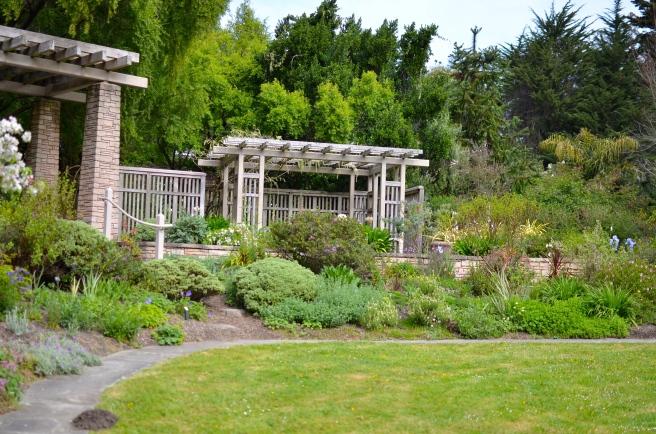 Golden Gate Botanical Garden_0352